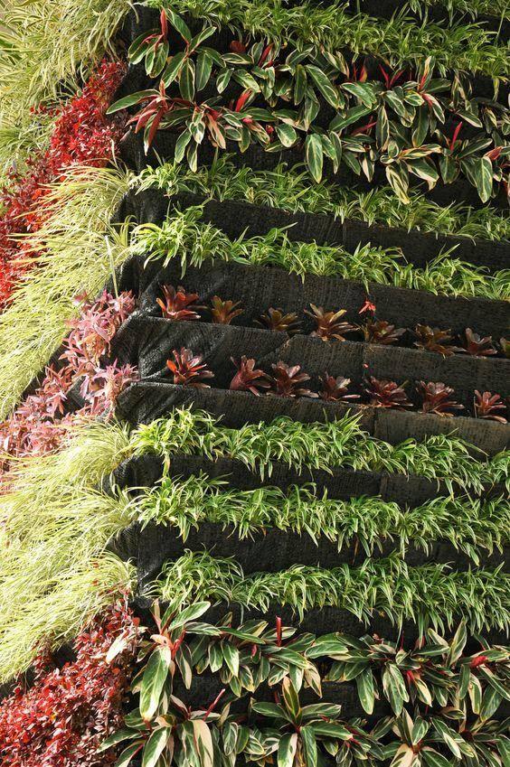 Ventajas de Los Muros Verdes Artificiales Frente a Muros Verdes Naturales